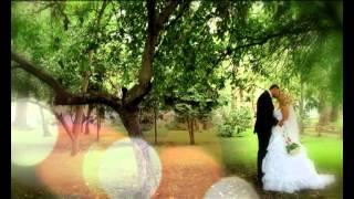 Свадебное видео в Саратове слайд шоу фото Алиса Шейл
