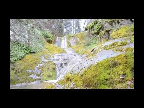 Tolman Creek Road, Ashland Oregon