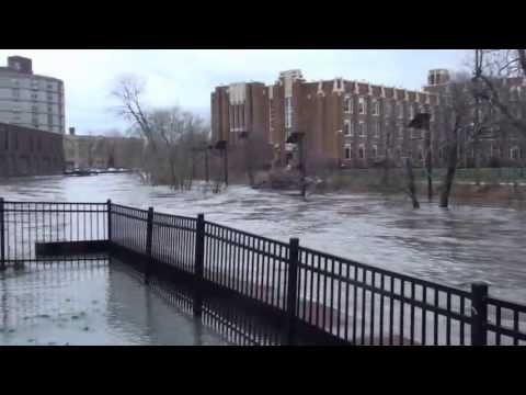 North Branch Chicago River Surge; Albany Park, Chicago April 18th, 2013