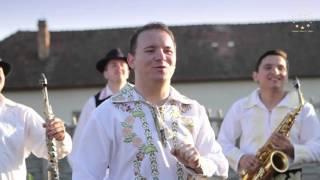 Mile Povan - Sa traiasca tata socru/Ma-nteleg bine cu soacra - Colaj 2015