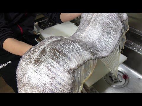 【お宝映像】指15本クラスのリュウグウノツカイ?みたいな謎の魚が手に入りました!