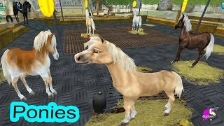 Ponies ? Star Stable Horse Online Game Play Video - Honey Hearts C