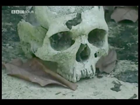 Learn krio language sierra leone blood