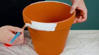 Cole fita crepe em 3 vasos de flores. Estas são as 7 melhores dicas para os dias quentes!