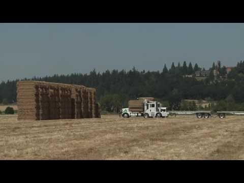 Anderson Hay & Grain Corporate Video