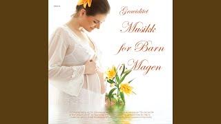 Winter 1st Movement Allegro Non Molto