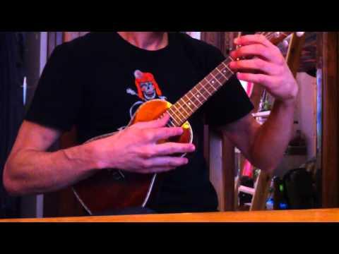 Rockin' the uke -  Ukulele Concert Roy Smeck cover