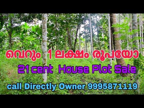 House Plot For Sale In Malappuram | Nilambur | Plot For Sale  | Residential Plot Below 1 Lakhs Only