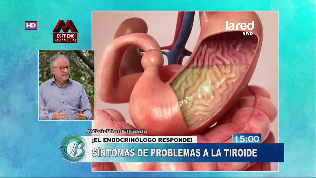 Endocrinologo para bajar de peso