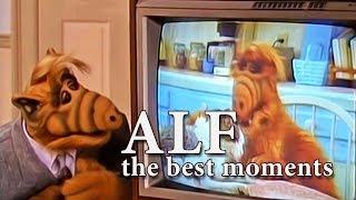 ALF Fans 39 Favorite Moments