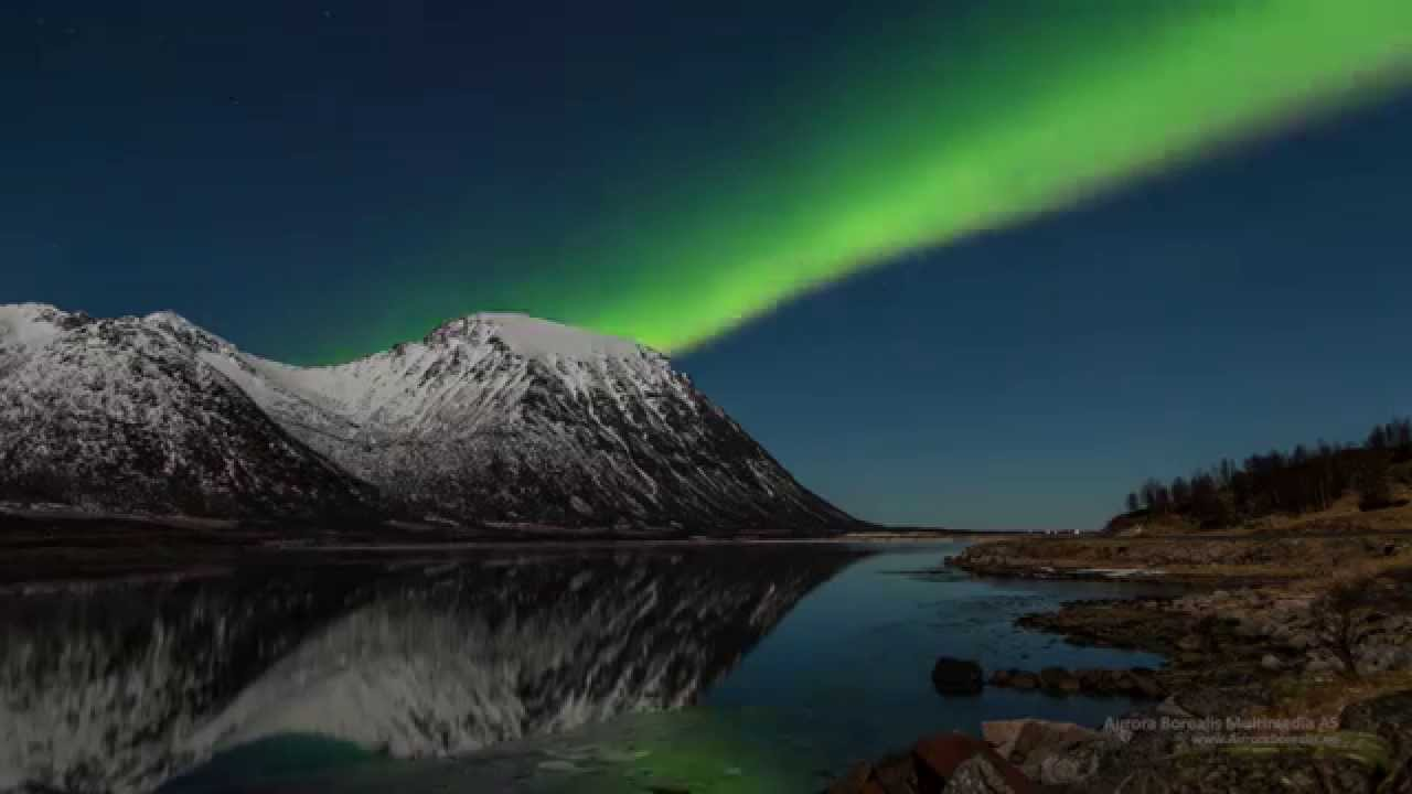 northern lights in lofoten - aurora borealis in the lofoten islands -norway