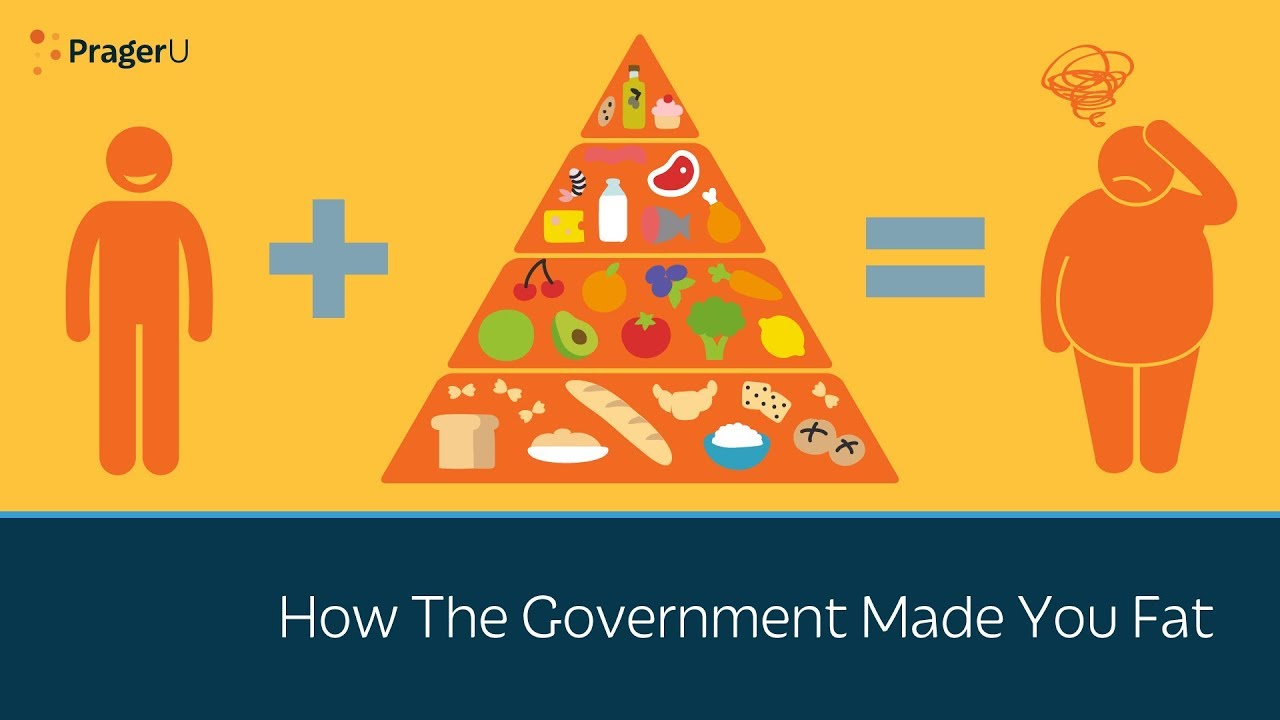 PragerU How the Government Made You Fat