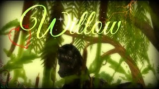 Star Stable Online - Willow (Music Video)(Hey guys! I hope you enjoyed this as much as I enjoyed making this! The instant I heard this song I HAD TO make a video XD You'll be seeing more videos than ..., 2016-08-04T09:53:16.000Z)