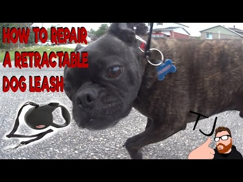 How To Fix A Retractable Dog Leash