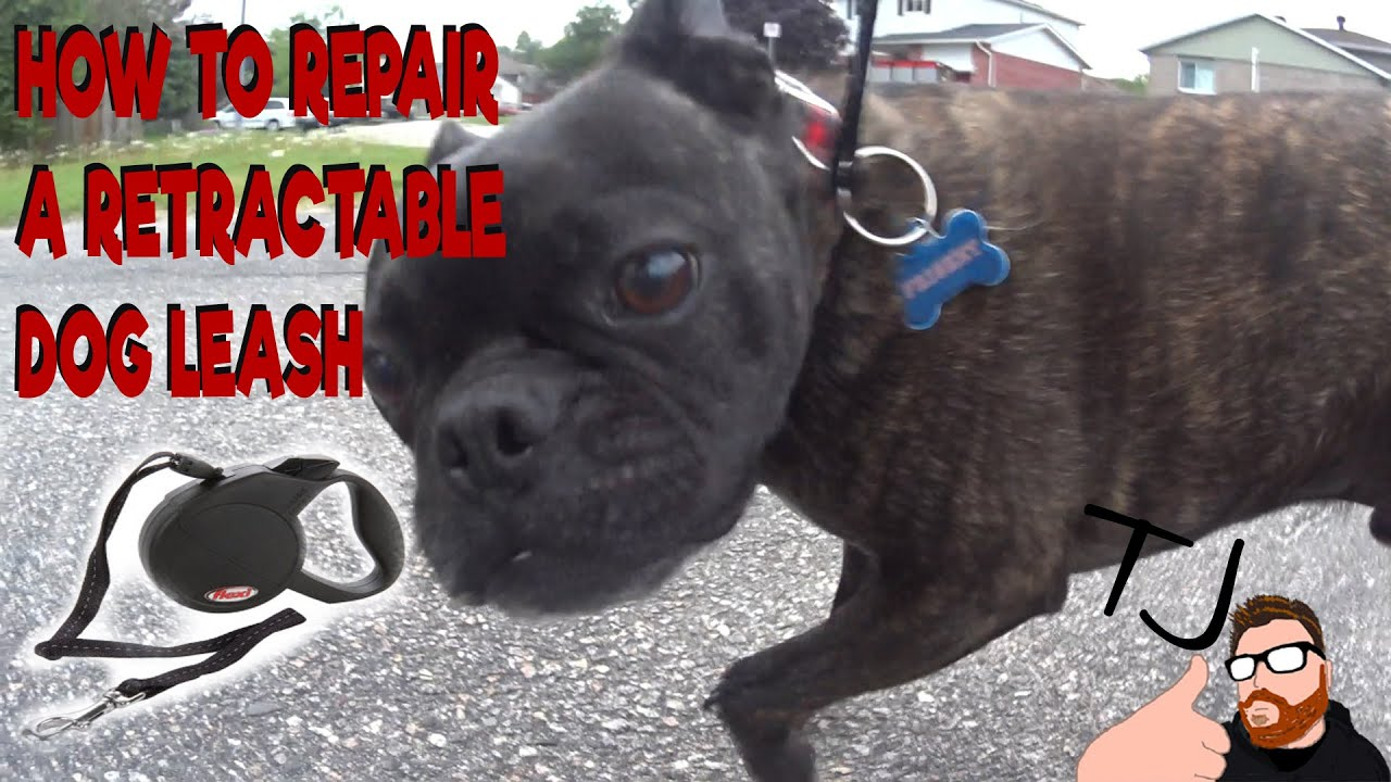 How To Fix A Retractable Dog Leash Youtube