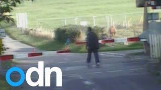 Caught on camera: People dice with death in level crossing near misses