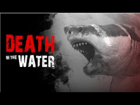Death In The Water: In Depth Review! (Shark Survival Game)