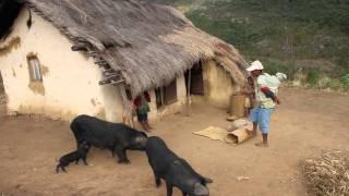 Farmers in Andringitra, Madagascar