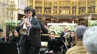 Concierto de Aranjuez, solo fliscorno