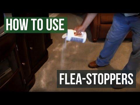 How To Use Flea Stoppers Flea Killer Powder