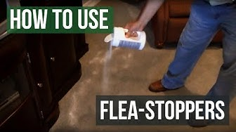 How To Use Flea Stoppers Flea Killer Powder