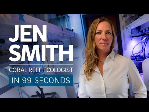 Coral reef ecologist Jennifer Smith in 99 Seconds
