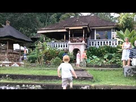Trip to Bali, visiting Ubud, Bali Zoo, Amed, Tulamben, diving in Bali.