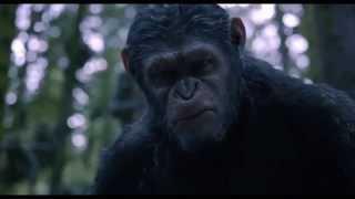 Планета обезьян: Революция - фрагмент #1