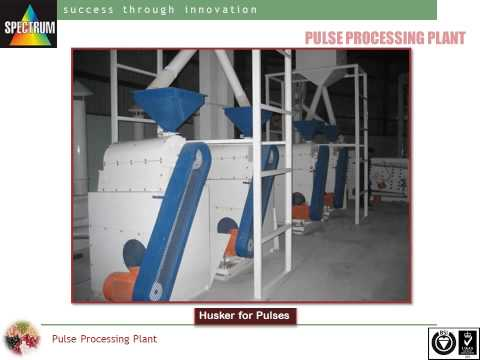 Color Sorter Machine Manufacturer in India