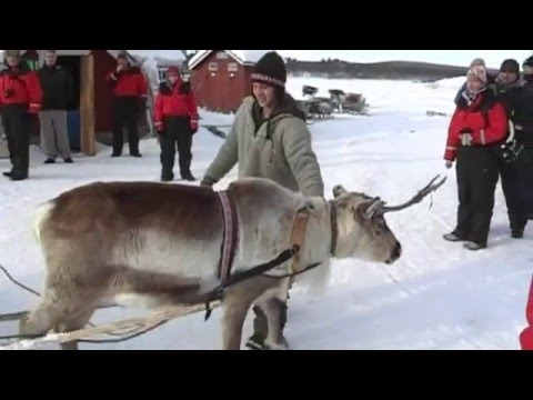 Hetta - Enontekio Finland 2012 Holiday