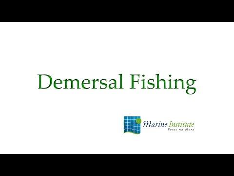 Demersal Fishing