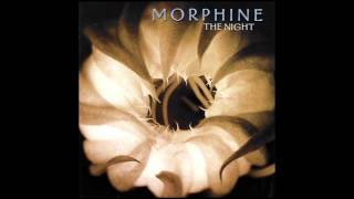 Watch Morphine The Night video