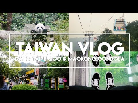 TAIWAN VLOG: Day 5 | Taipei Zoo and Maokong Gondola