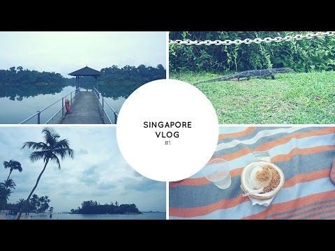 СИНГАПУР ВЛОГ №1: Сентоза, пляж, парк-резервуар Мак Ритчи