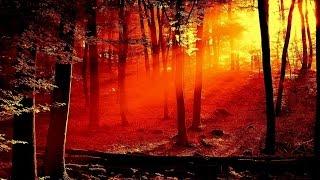 VIVALDI The Four Seasons Autumn