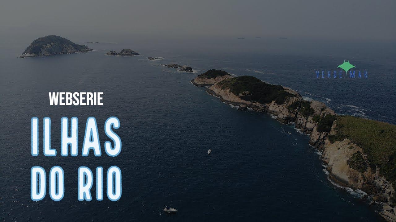 Ilhas do Rio Webserie - Mergulho científico para a pesquisa de peixes recifais e tartarugas marinhas