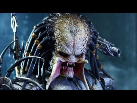 The Entire Predator Story Finally Explained