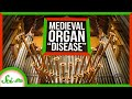 "The ""Disease"" That Struck Medieval Church Organs"