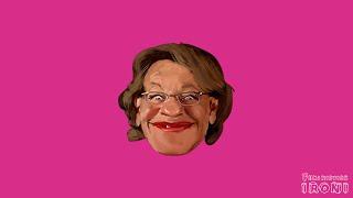 Gudrun Schyman är utvecklingsstörd | Feministisk ironi
