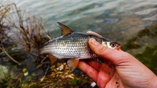 Рыбалка На Фидер в Середине НОЯБРЯ