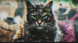 Кладбище домашних животных — Трейлер. Пародия.(2019)