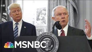 Donald Trump Reportedly Called Jeff Sessions An 'Idiot' & Told Him To Resign | The 11th Hour | MSNBC Free HD Video