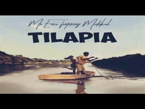 Mr  Eazi ft  Medikal – Tilapia OFFICIAL AUDIO 2017   YouTube