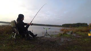 Первая такая рыбалка рыба в шоке Осенний фидер на озере