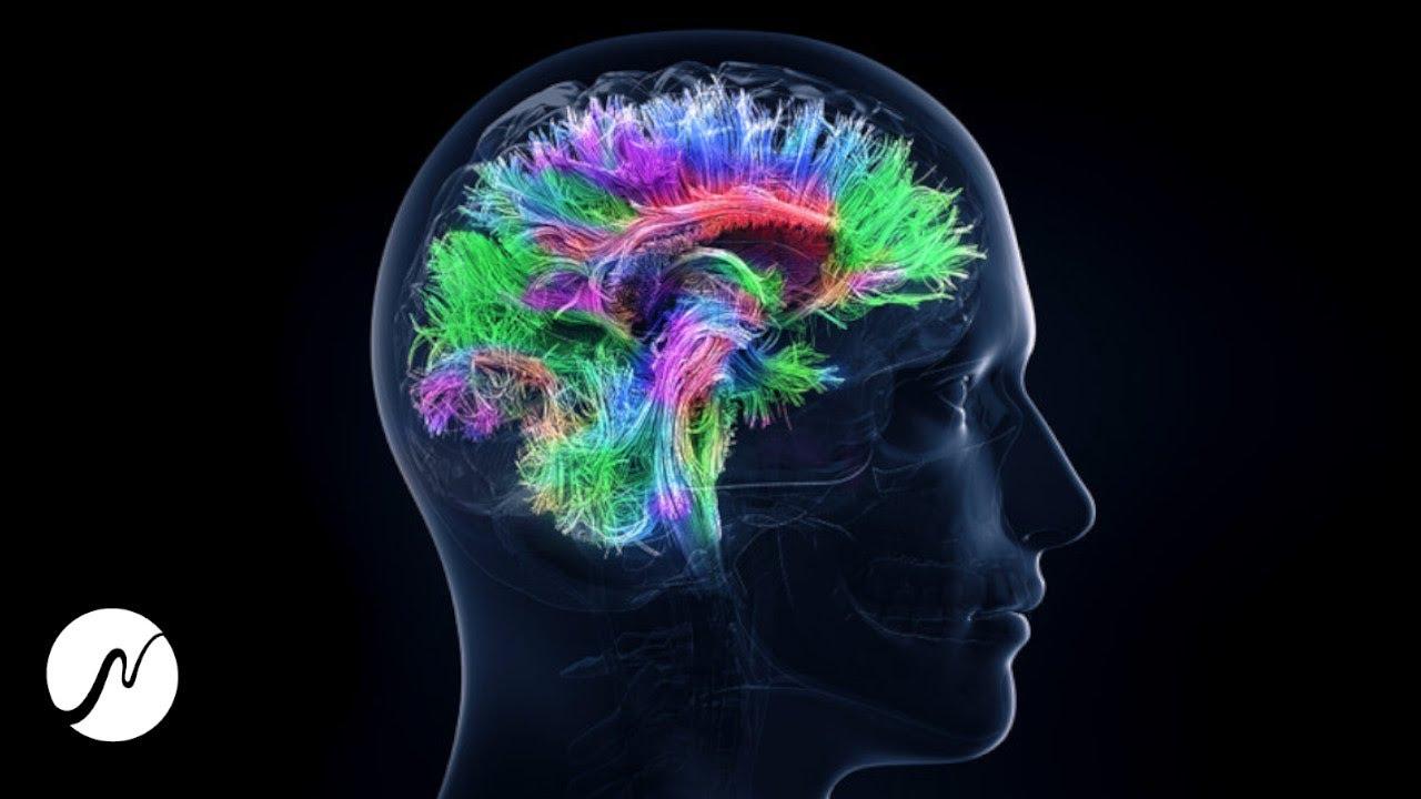 100% Gehirn Potenzial aktivieren - Genie-Frequenz - Beta Wellen (Brainwaves)