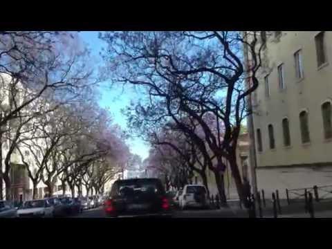 Lisboa, do Rato a Belém