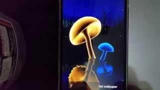 VA Magic Mushrooms 3D