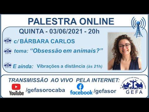 Assista: Palestra Online - c/ BÁRBARA CARLOS (03/06/2021)