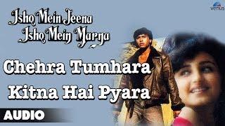 Chehra Tumhara Kitna Hai Pyara Full Audio Song | Ashif Shaikh, Divya Dutta |