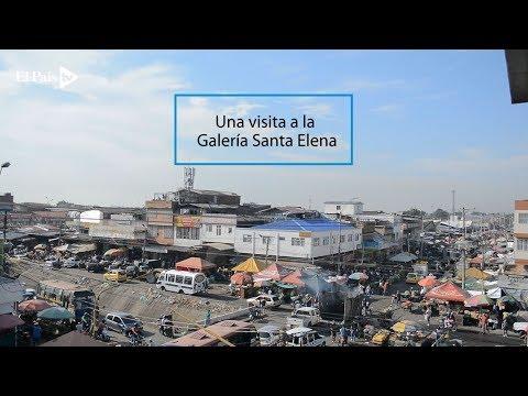 Una Visita A La Galería Santa Elena De Cali
